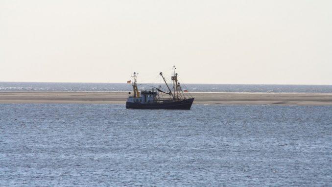 Fischkutter auf einer Sandbank bei Ebbe